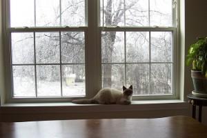 install storm windows